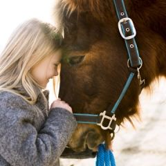 Pretty little girl with horse on sunny winter day.