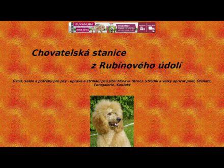 www.zrubinoveho-udoli.wz.cz