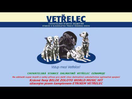 www.vetrelec.com