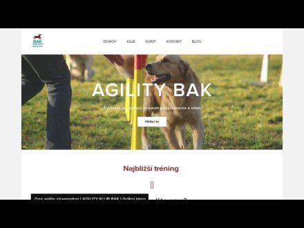agilitybak.weebly.com