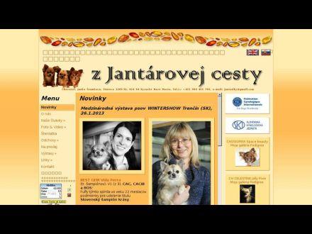 www.zjantarovejcesty.xf.cz