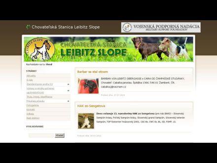 www.foxterrier.sk