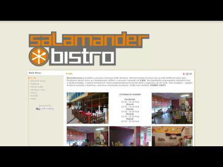 www.bistrosalamander.eu