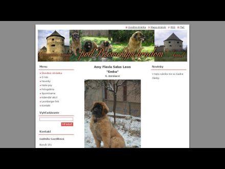 www.podbzovickymhradom.sk
