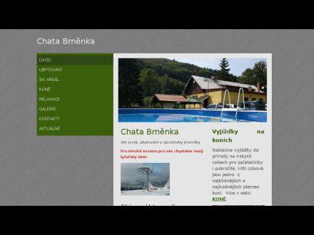 www.brnenka.net